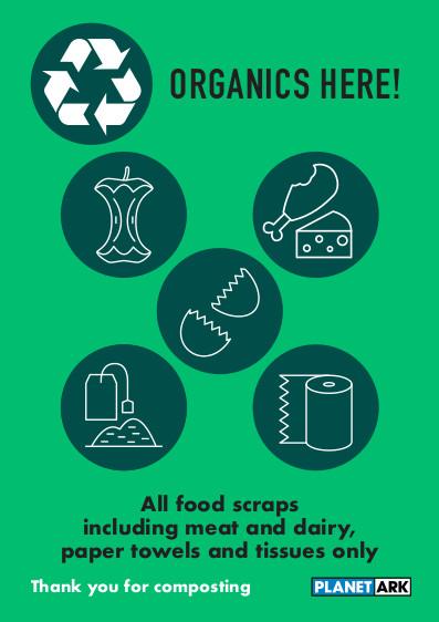 All food scraps